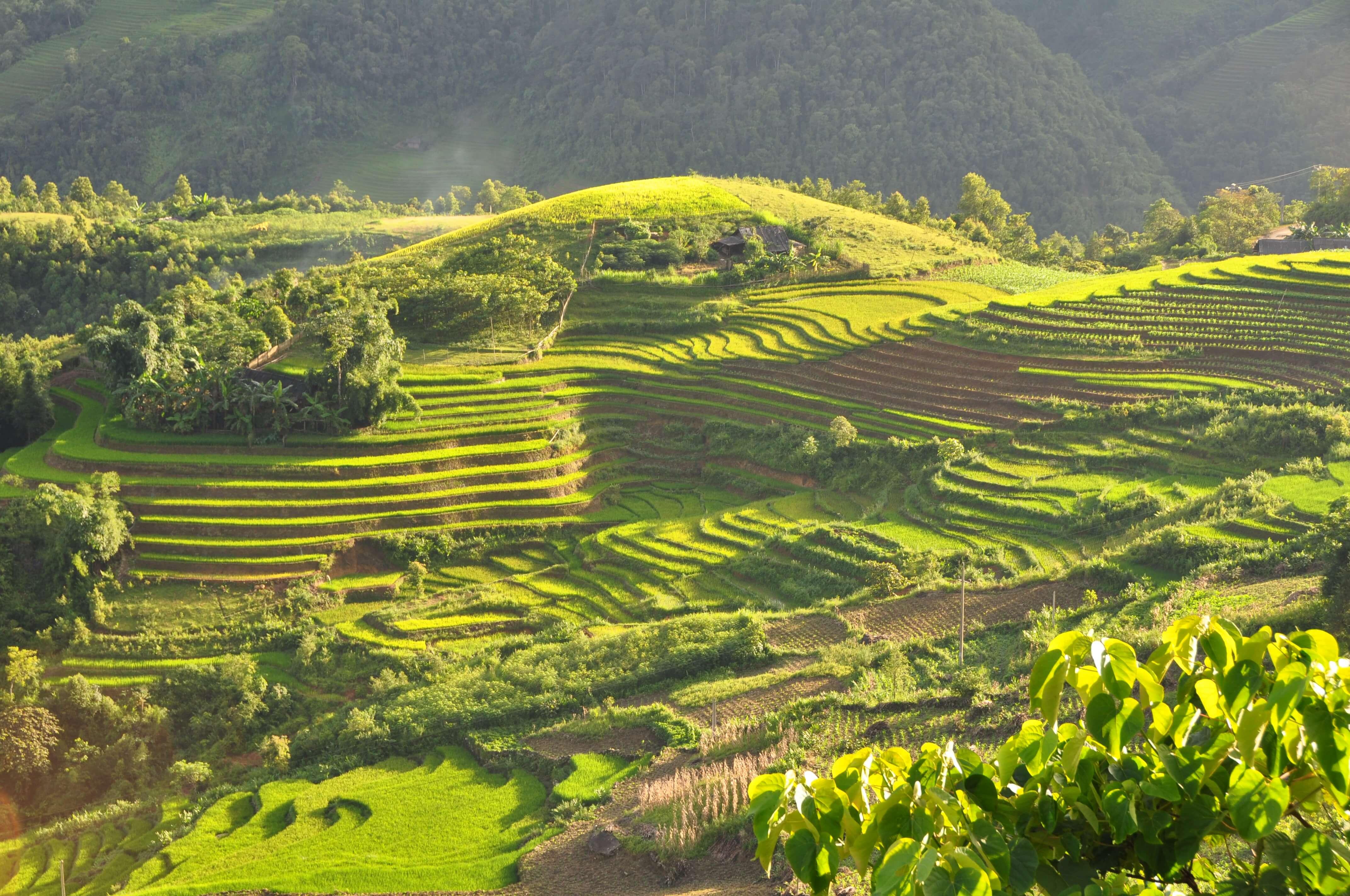 Вьетнам, Сапа